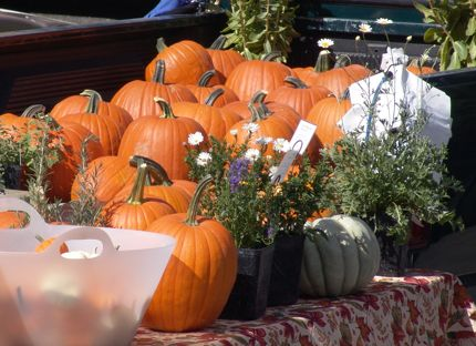 Market pumpkins northwest wining and dining website