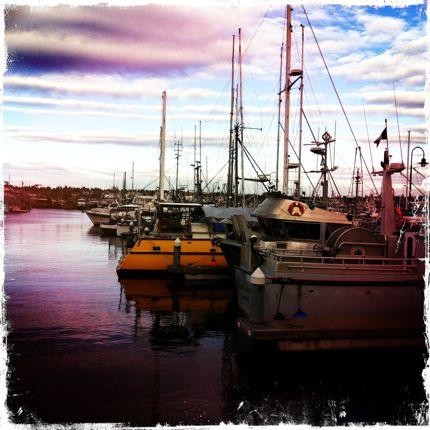Fisherman's Terminal boat
