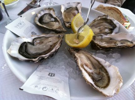 Raw oysters on the half shell in bordeaux