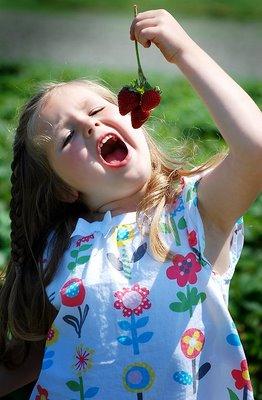 Biringer Farm girl in field with berries