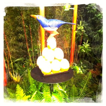Garden show 2014 exotic bird northwest wining and dining downtown seattle website link